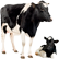 Cельское хоз-во, животноводство