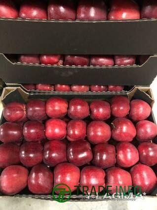 Продаем яблоки от 20 тонн партия.
